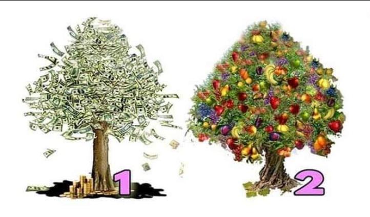 Izaberite drvo i procitajte da li cete imati puno novca !!